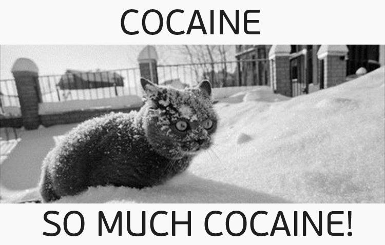 Прикольные картинки кокаина, пасха мерцающие